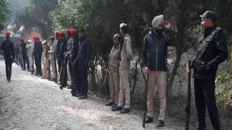 Input of terrorist in forest area