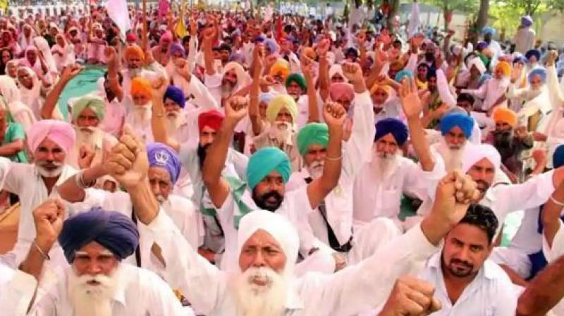 Farmers Will Protest On 5-Day In Punjab For Debt Waiver