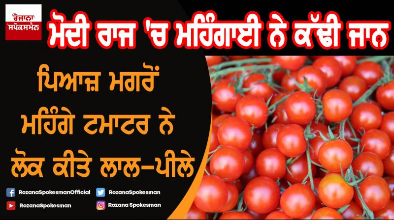 Now, tomato price soar to Rs 80/kg