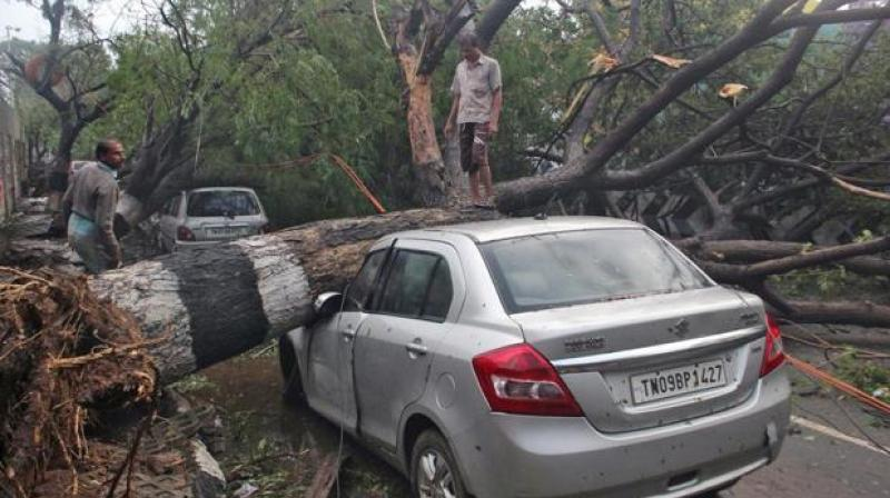storm terror 18 people killed rajasthan