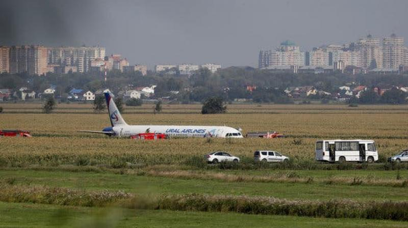 Russian Plane Hits Birds Minute After Takeoff
