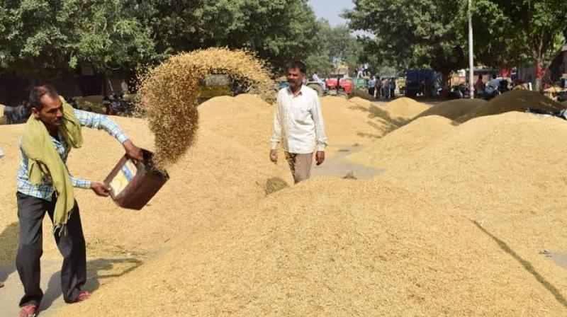 Government of Punjab and farmers