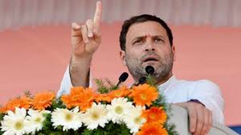 does not want  BJP free India: Rahul Gandhi