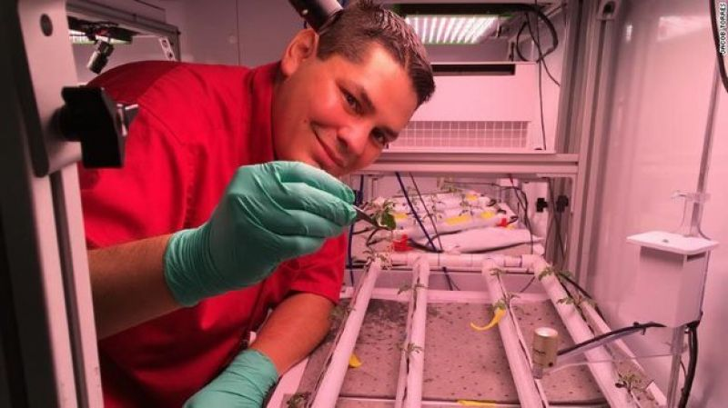 NASA PLANNING TO GROW CHILI PEPPERS ON SPACE STATION